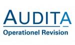 Audita konsulent på operativt niveau