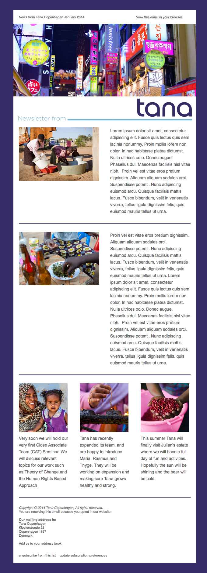 Tana newsletter template